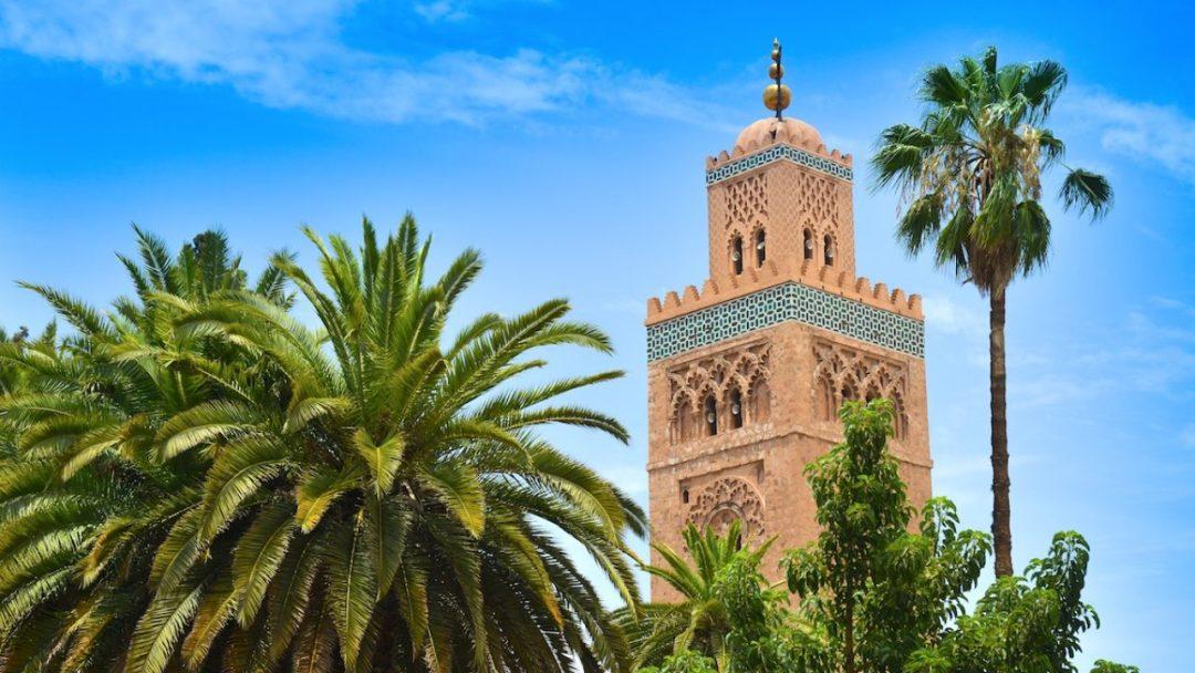 Le Maroc a proposé un protocole de traitement des malades du coronavirus avec la chloroquine
