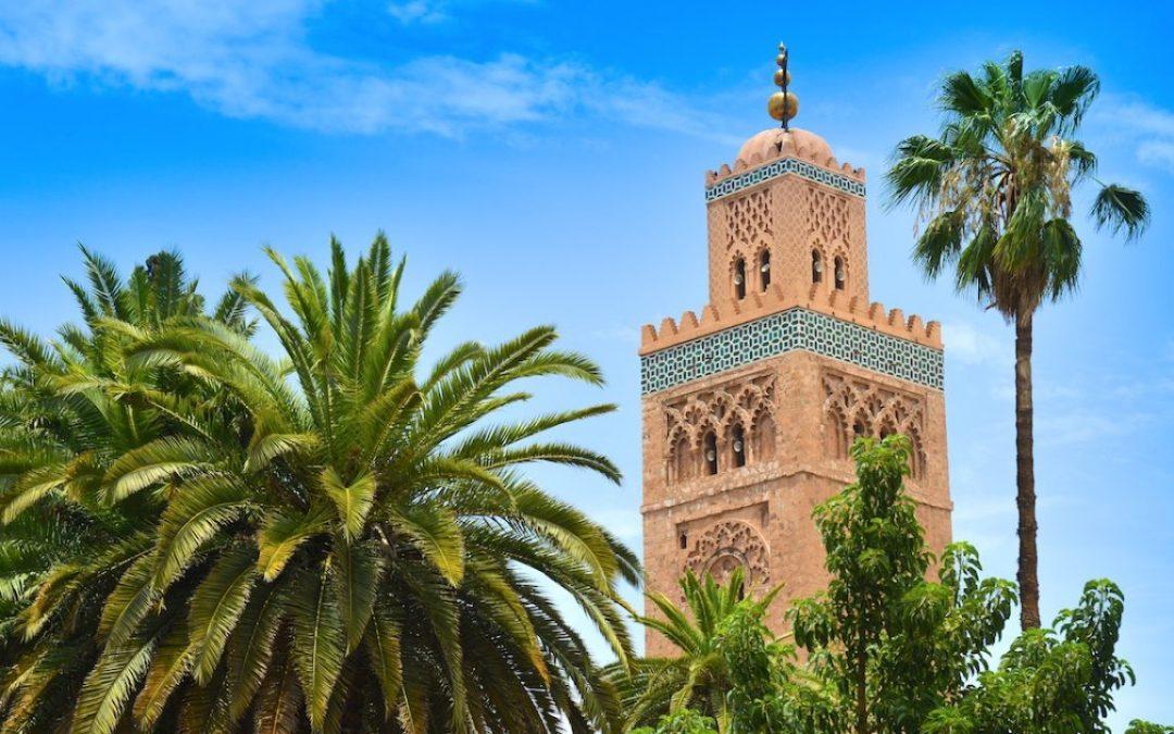Le Niger et le Maroc ont élaboré leurs protocoles de traitement des malades du Coronavirus