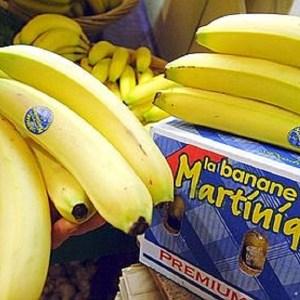Producteur de bananes