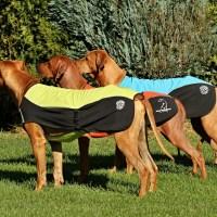 Oblečky pro psy HELYA s logem rr-sportu