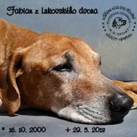 Fabian Z Lukovského Dvora 16.10.2000 – 29.5.2013