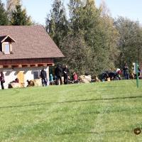 Podzimní závody v kempu Opatovec u Svitav 16.10.2011