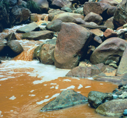 polluted watercourse