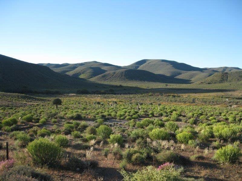Boerneef skets: Ligter as die Wind