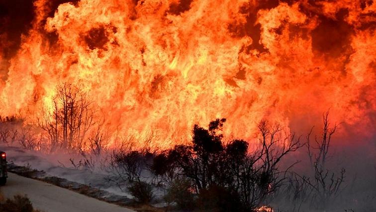 Bedelaars in winkelsentrums; aanspreeklikheid as plaaswerker brand stig…
