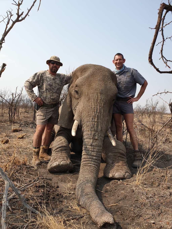 In Flapoor ontdek ons die wonderwêreld van olifante