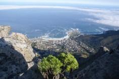 Blick vom Tafelberg nach Camps Bay