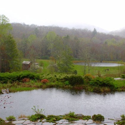 Early Spring in the Appalachian Mountains