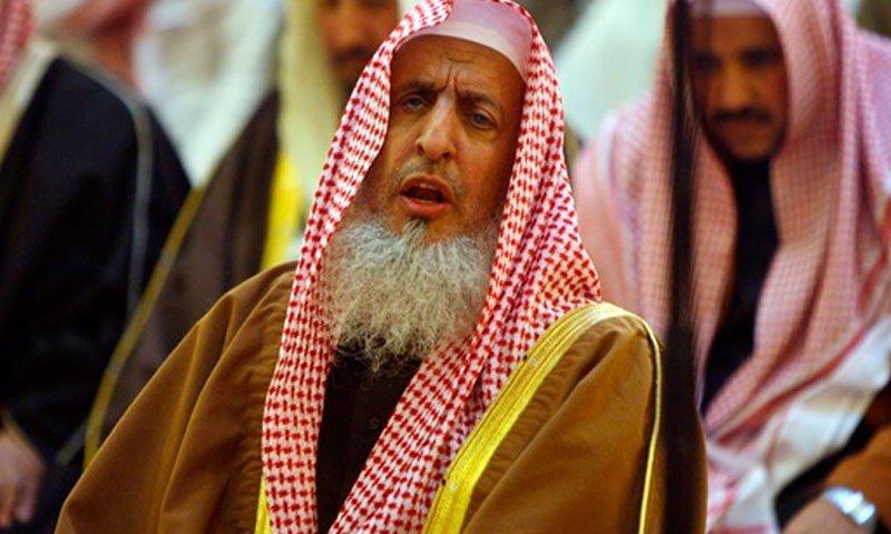 Saudi Arab Hamas Terrorist
