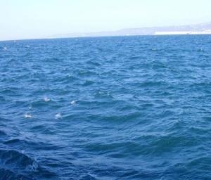 mare profondo 3