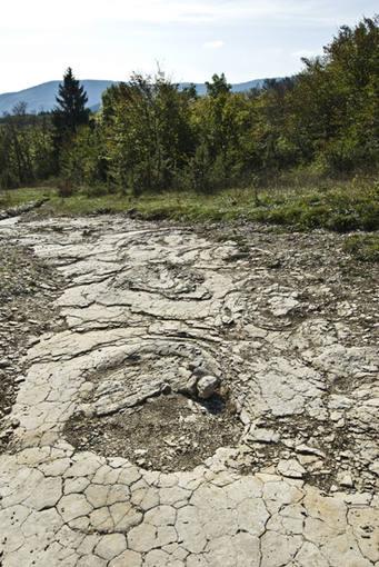 Las huellas pertenecen a dinosaurios que podían pesar hasta 30 toneladas