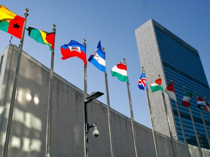 LGV klaagt bij Verenigde Naties om verkiezingen