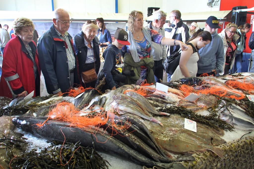 Verdachten visfraude voor rechter