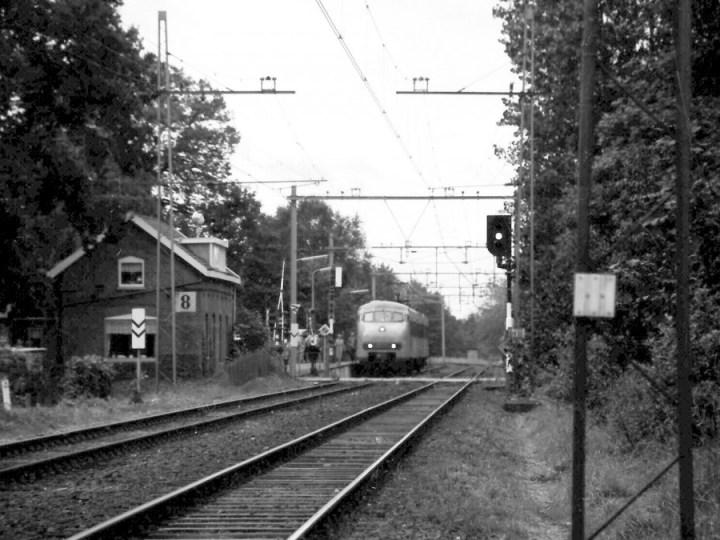 IJmuidenaar (17) mept treinconducteur