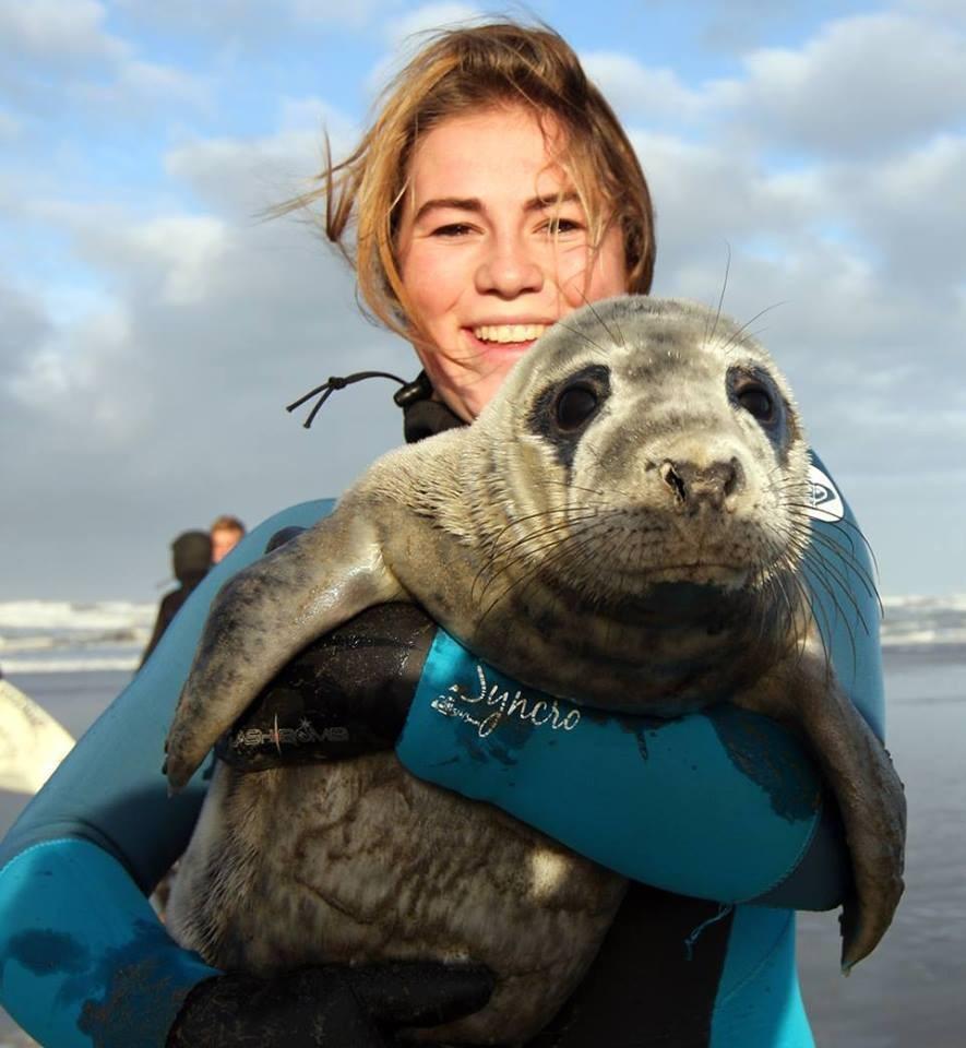 Nieuwe naam voor hulpteam zeedieren