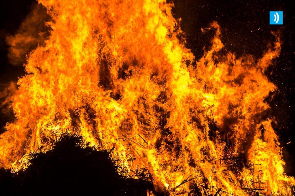 kerstbomen-verbranding-santpoort-5