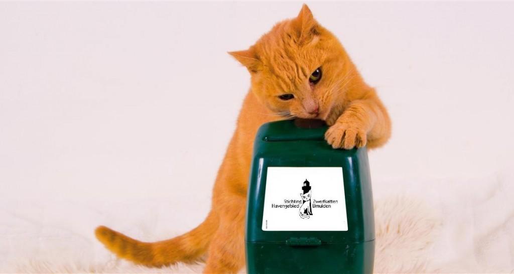 Collecte voor jubilerende kattenopvang