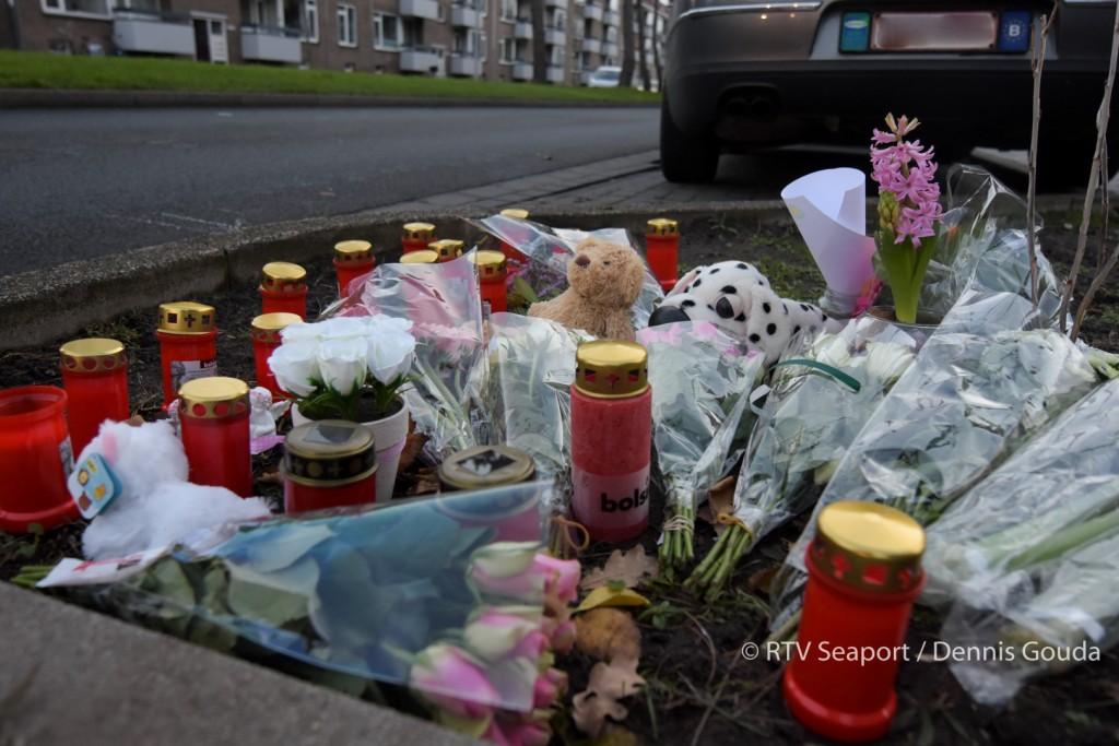 Politie zoekt getuigen van dodelijk ongeval