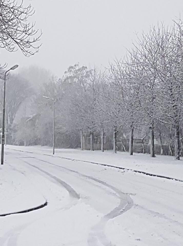 Sneeuw Anneke Esselman