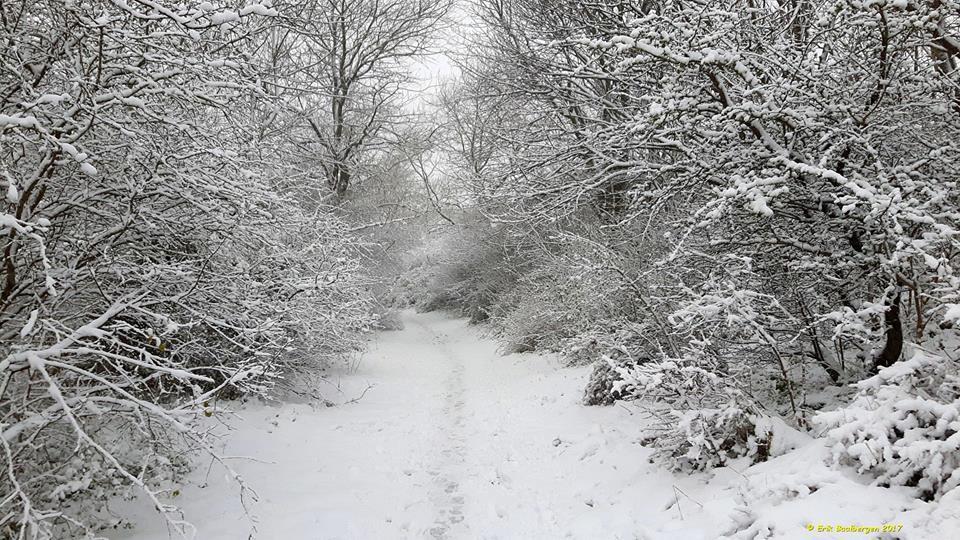 Sneeuw Erik Baalbergen01