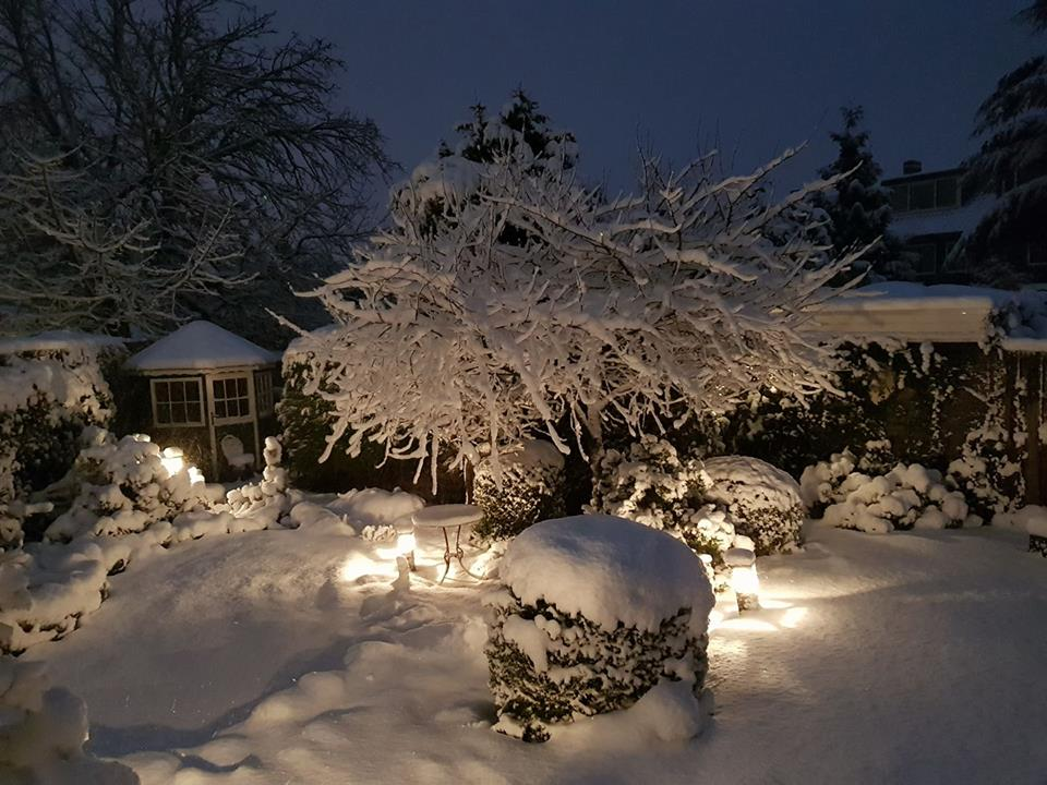 Sneeuw Paulone Sparrius