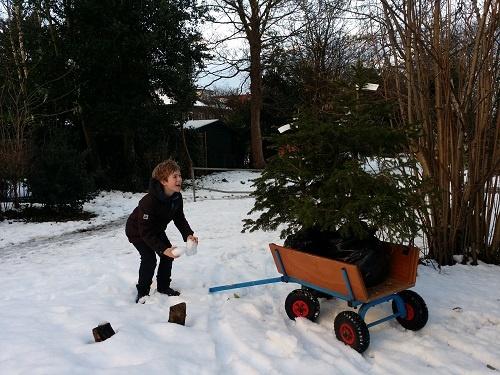 Adopteer een kerstboom via PV-museum