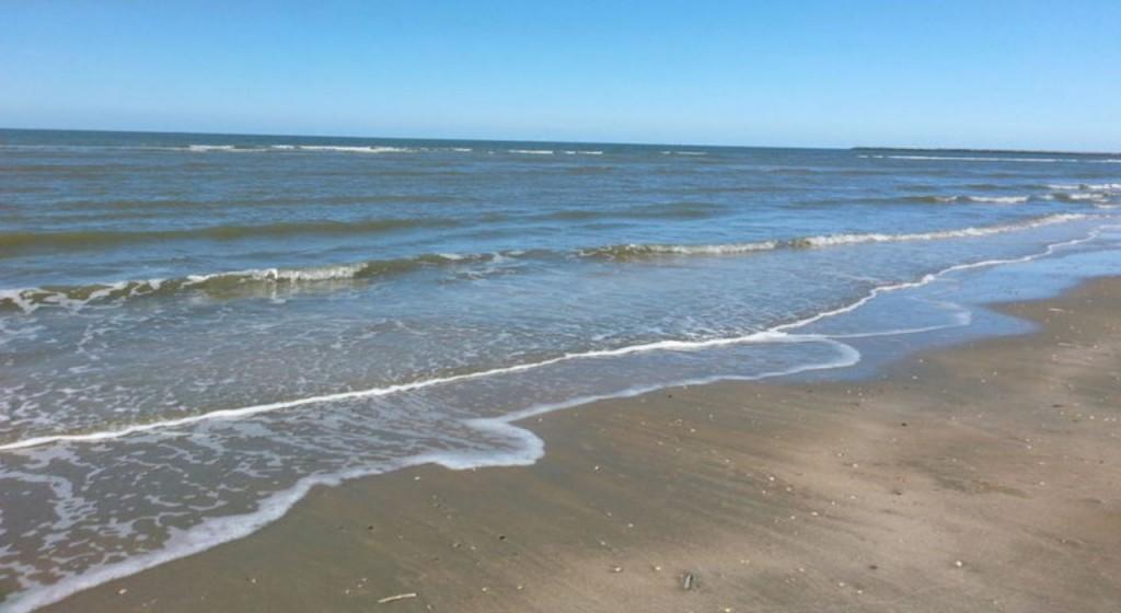 Strandexcursie bij de Zuidpier