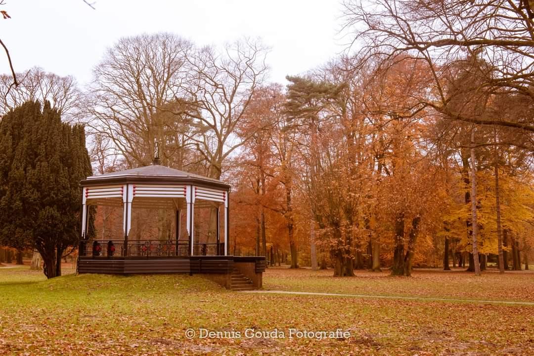 Fotowedstrijd herfstig Velsen