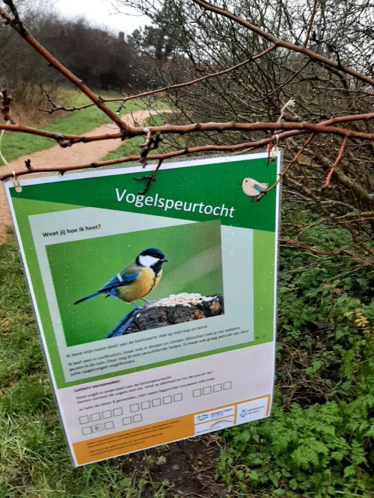Vogels spotten met het Pieter Vermeulen Museum