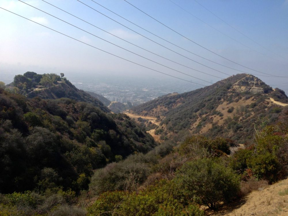 Runyon Canyon - Healthy Los Angeles | rtwgirl