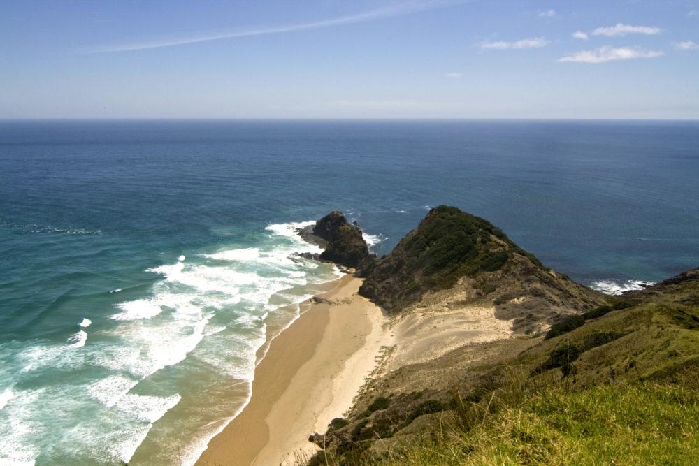 Cape Reinga + 90 Mile Beach: Dune Rider Tour