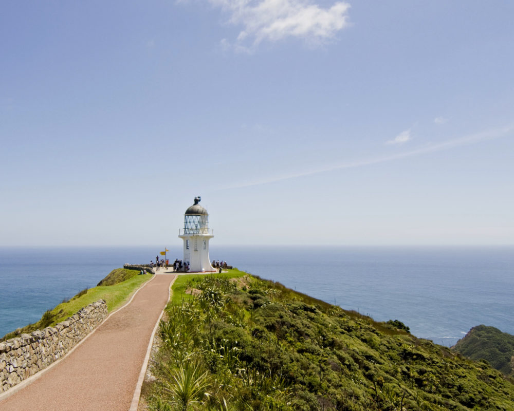 Cape Reinga + 90 Mile Beach: Dune Rider Tour