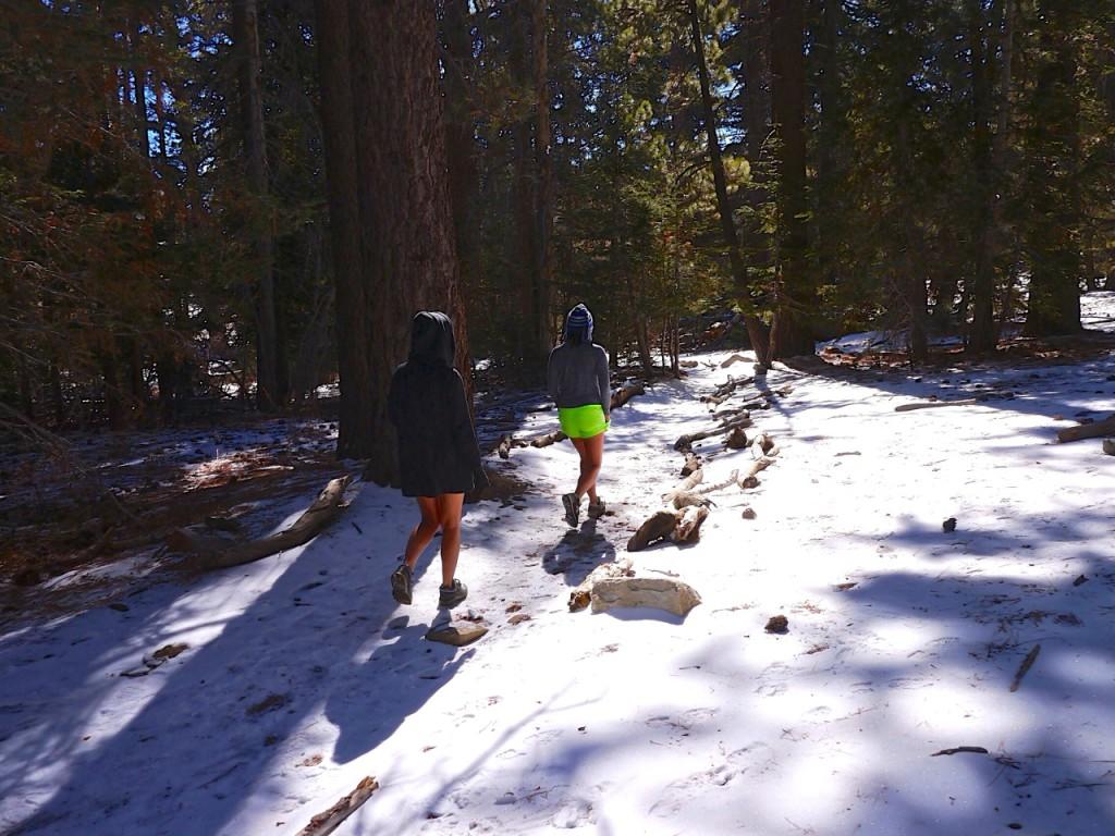 Palm Springs - Mount San Jacinto Hike