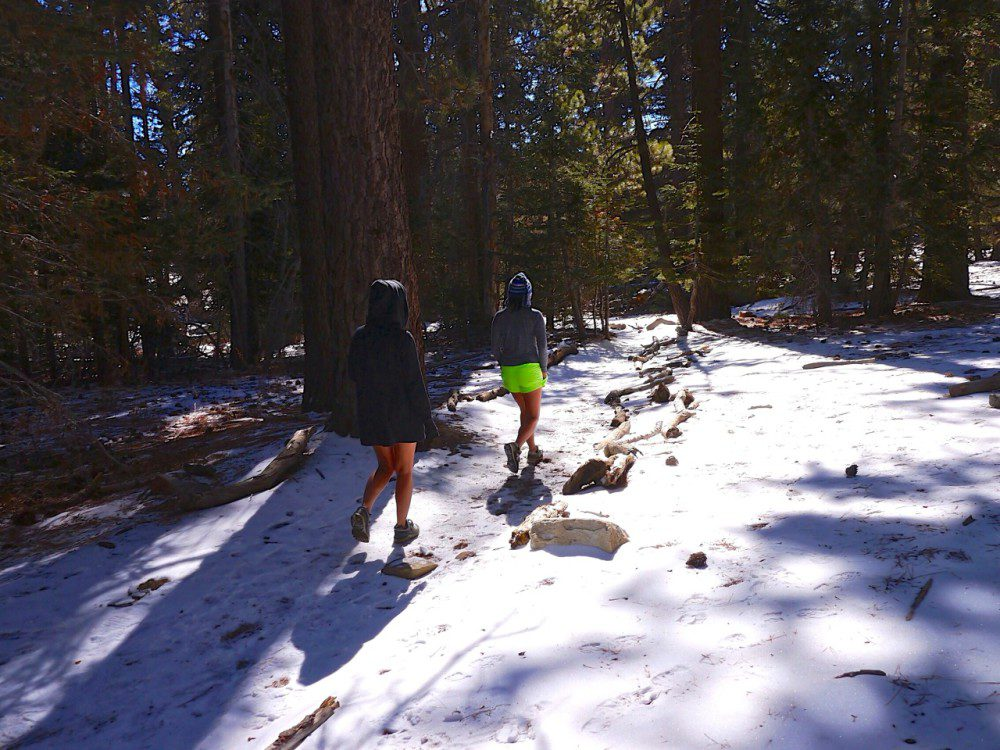 Palm Springs Weekend Guide: Mount San Jacinto Hike