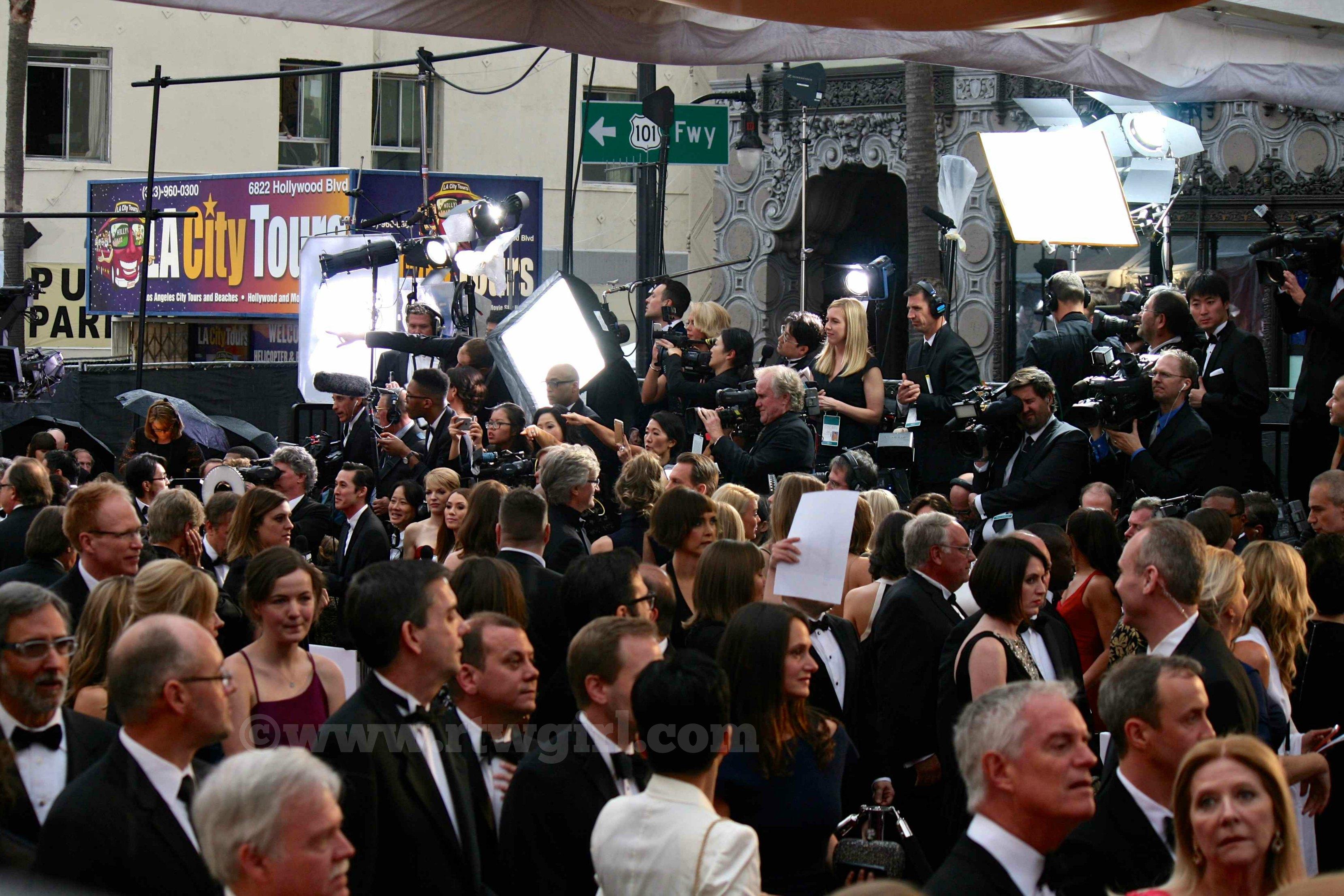 Oscar Red Carpet 2015 Frenzy