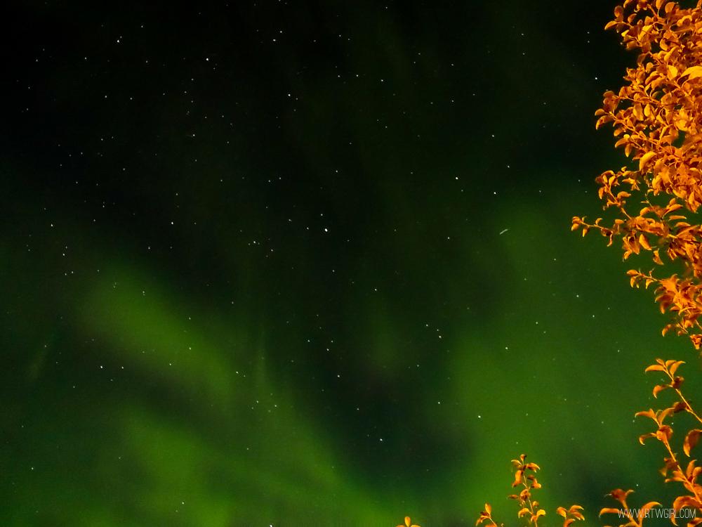 Northern Lights Dawson City Yukon