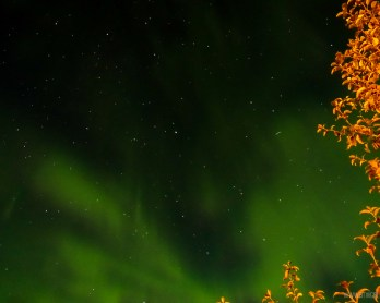 Northern Lights Dawson City Yukon