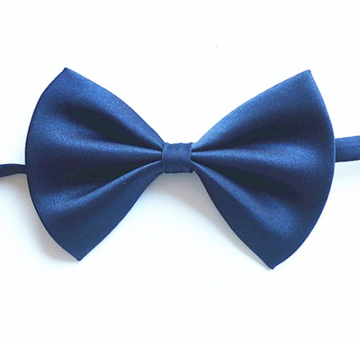 Бабочка темно-синий цвет