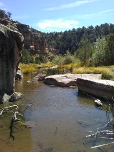 Tall, tree-covered canyon walls in the distance. Shallow creek in the foreground.