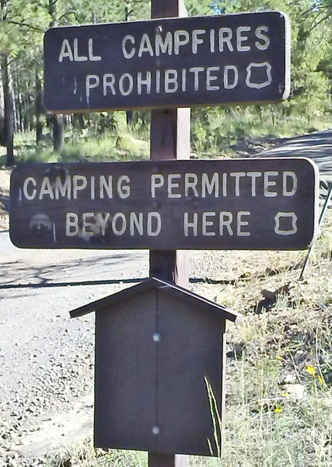 "Brown public land sign saying ""All Campfires Prohibited"" and ""Camping Permitted Beyond Here."""