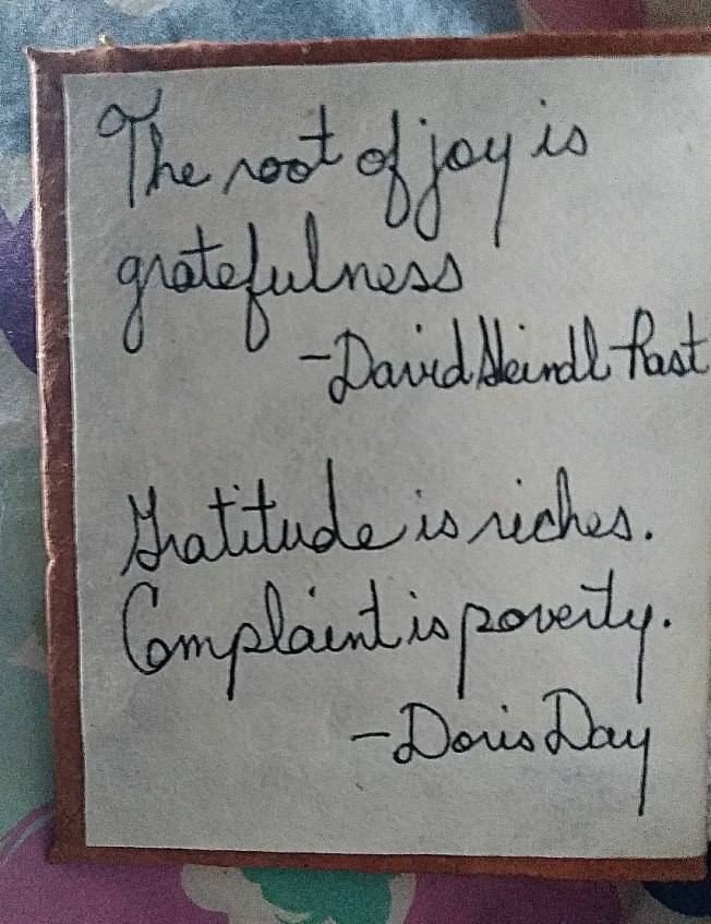 "Two quotes read: ""The root of joy is gratefulness.""-- David Steindl-Rast and ""Gratitude is riches. Complaint is poverty.""--Doris Day"
