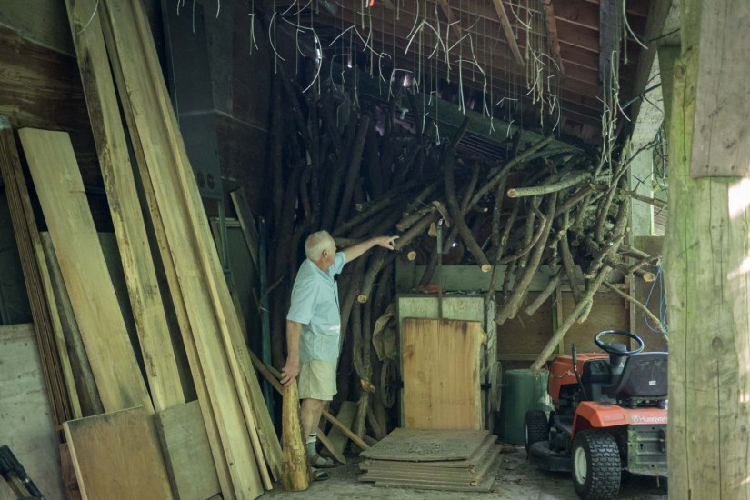 How about some curved branches to make some chairs?
