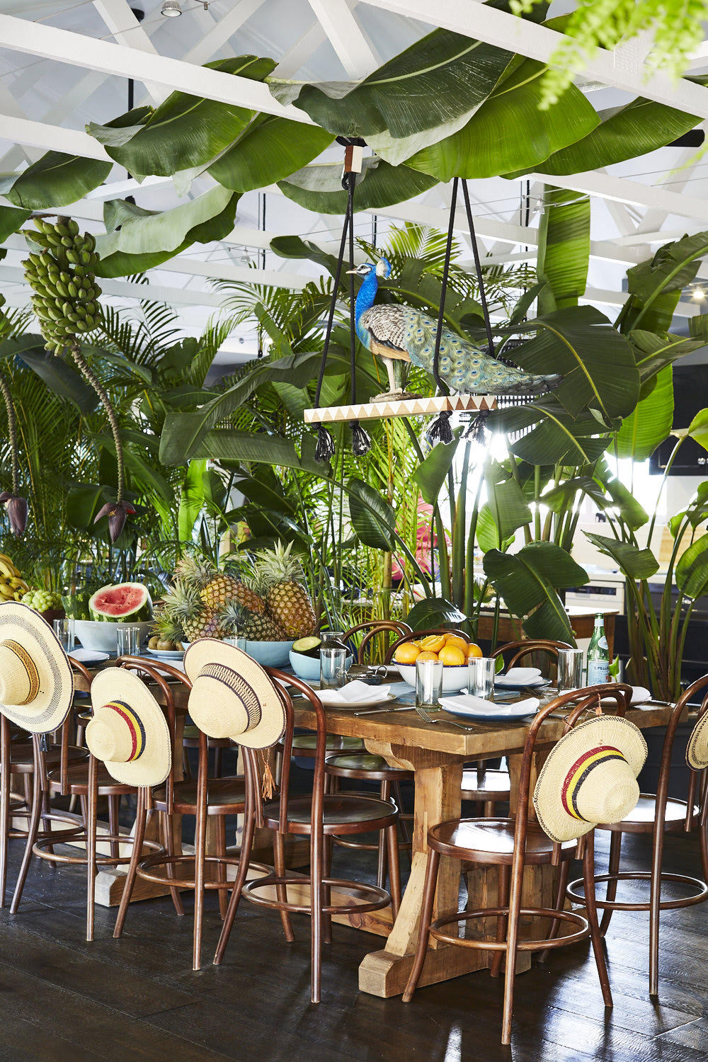 Designer Duo Alida and Miller create an indoor tropical dining oasis.