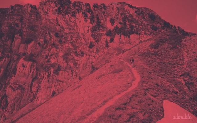 A mountain trail