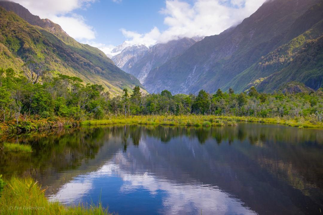 Nya Zeeland - Frans Josef