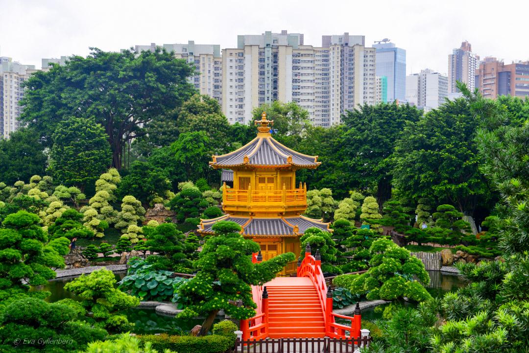 Hong Kong Parks