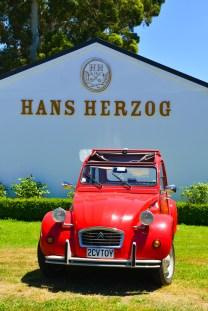 Nya-Zeeland-Marlborough-Vingard-Hans-Herzog