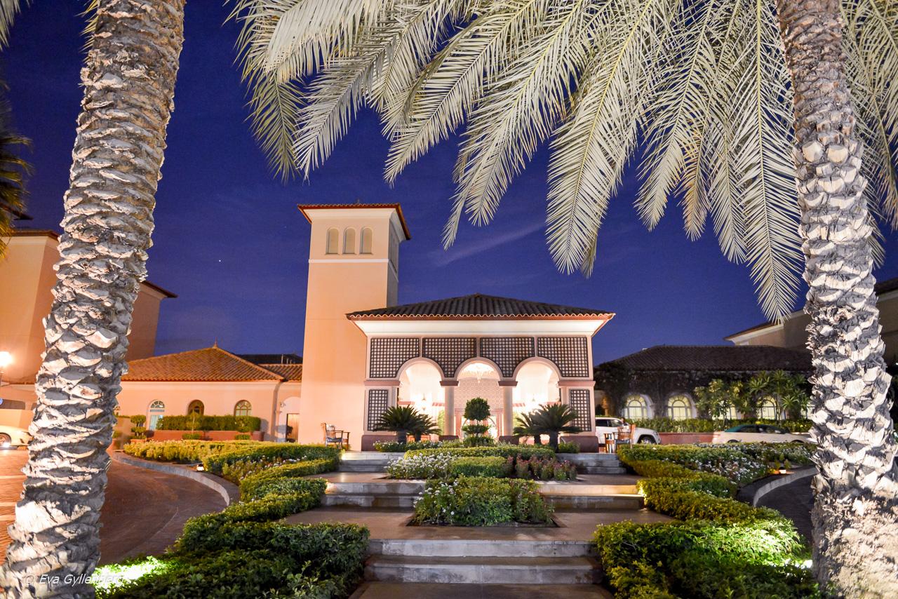 Ritz-Carlton - Dubai - UAE