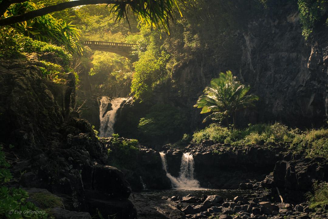 Vägen till Hana – Mauis vackraste väg