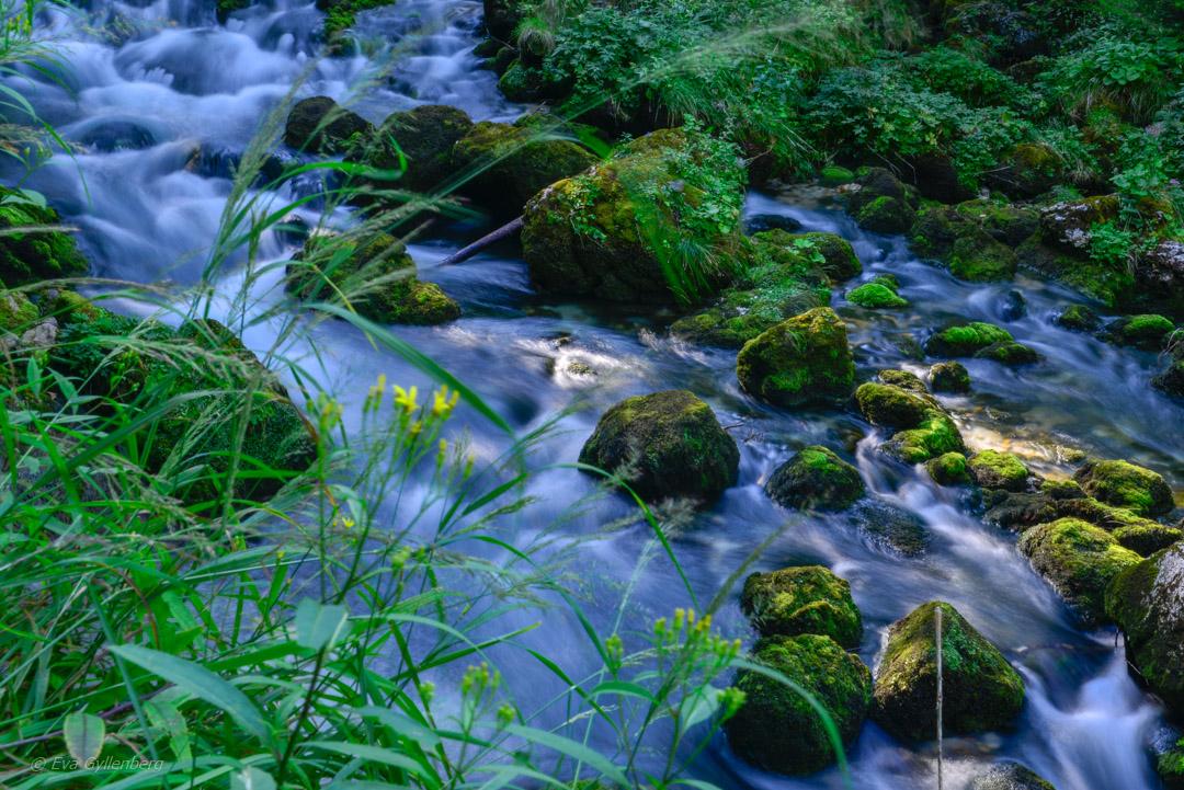 Gollinger Wasserfall - Österrike